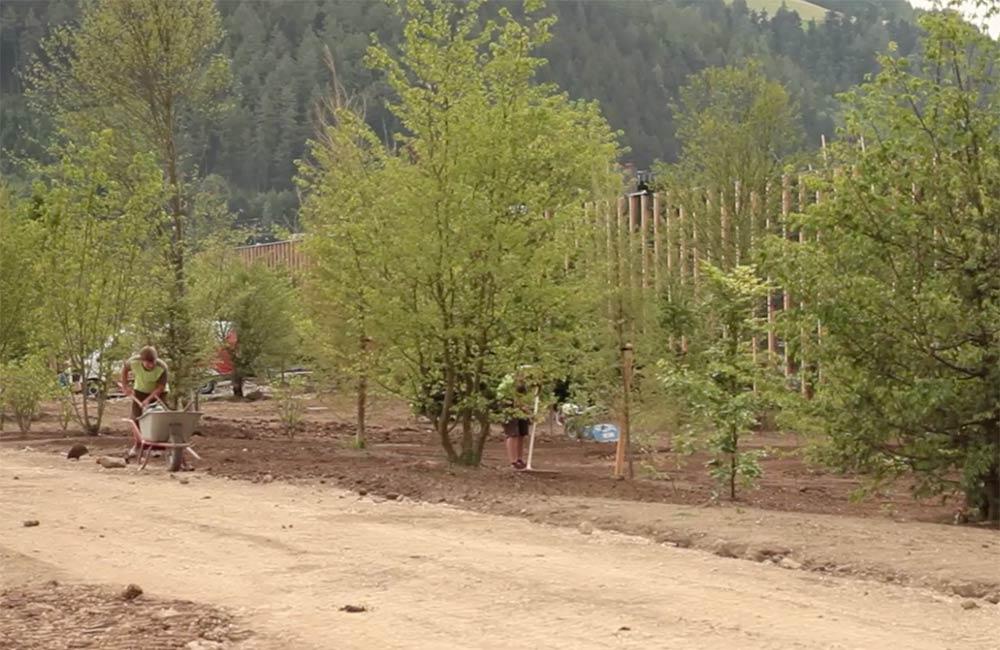 unsere-projekte-gruene-erde-welt-almtal-oekoplant-24.jpg