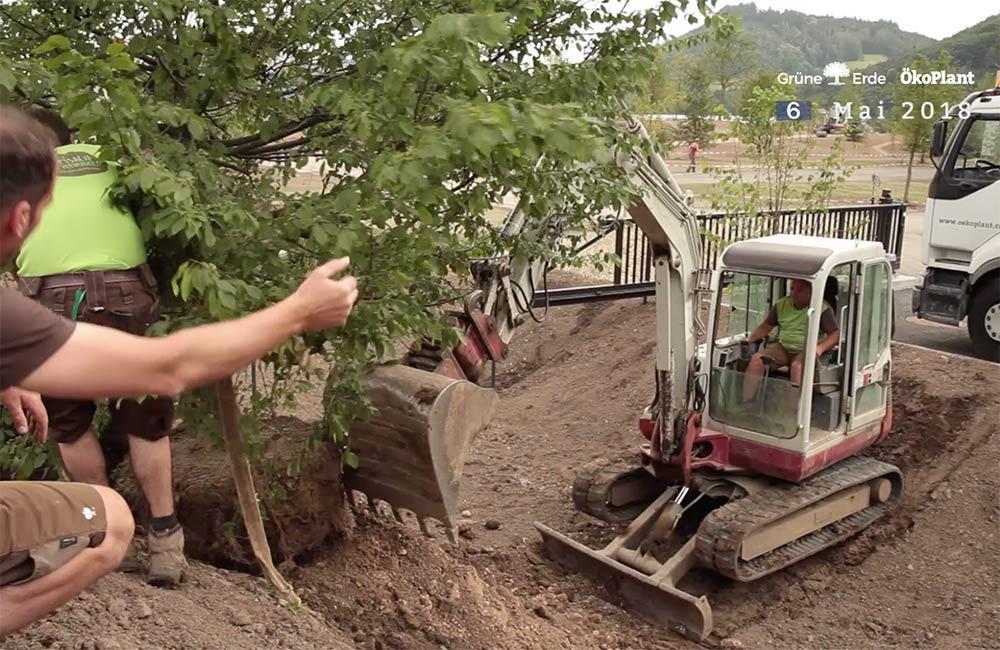 unsere-projekte-gruene-erde-welt-almtal-oekoplant-26.jpg
