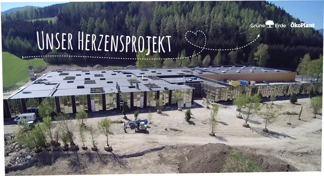 unsere-projekte-header-gruene-erde-welt-almtal-pekoplant.jpg