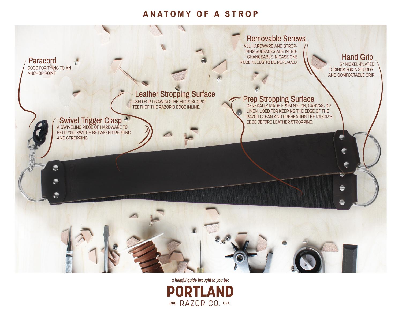 anatomy-of-a-strop.jpg