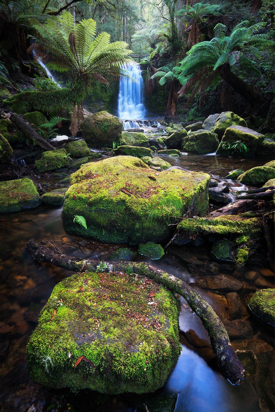 Spirit of Water, by Tristan Stuart. Tasmania.