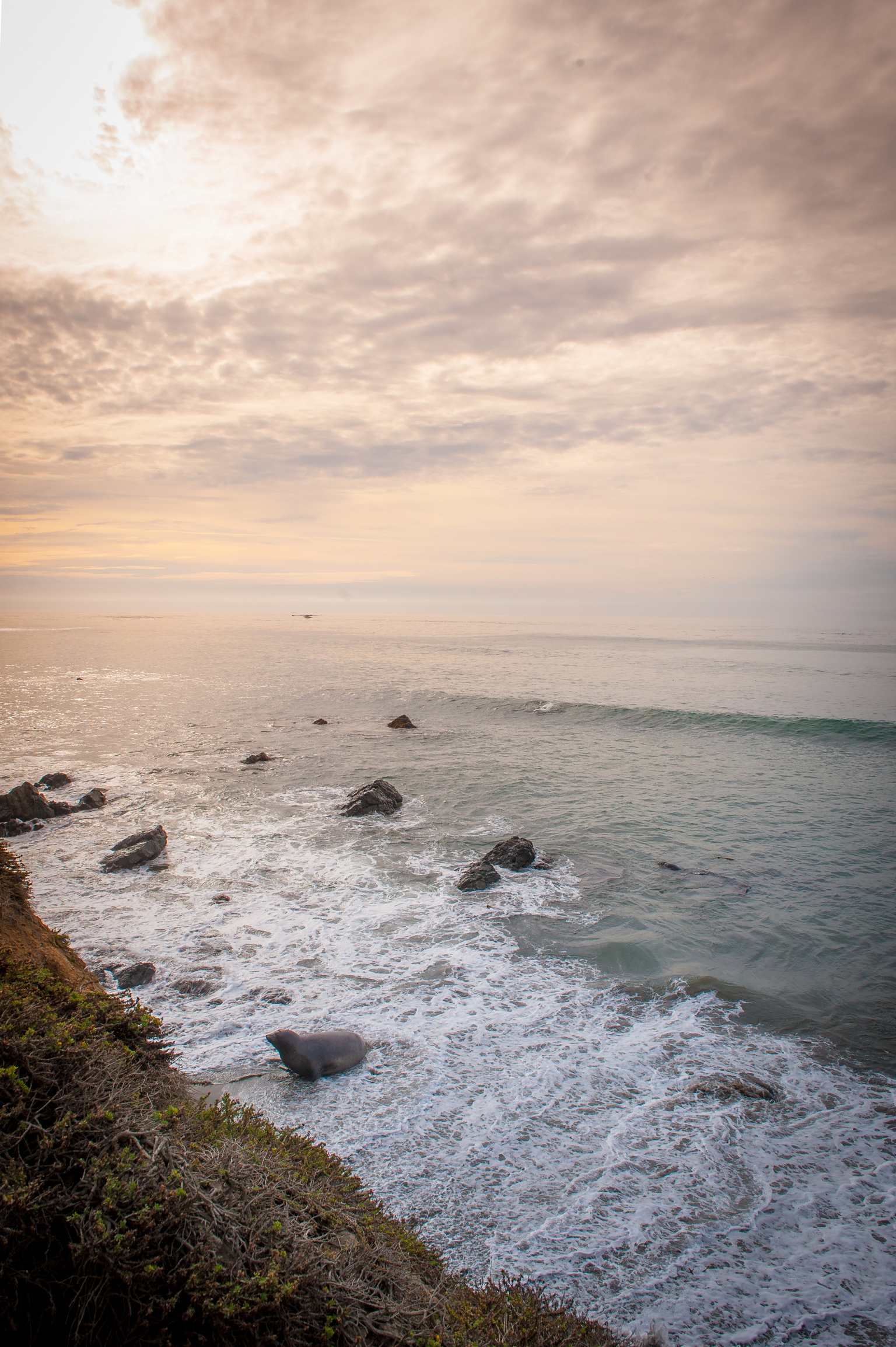 California Coast-7.jpg