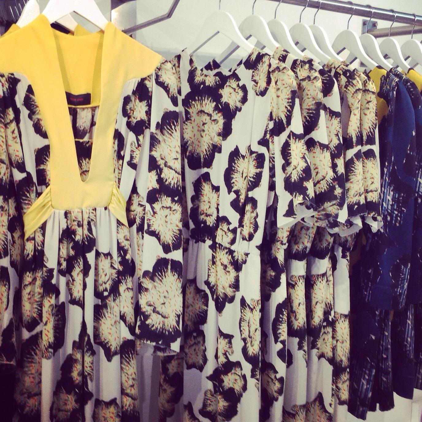 Designer Ellie Lines' silk dresses