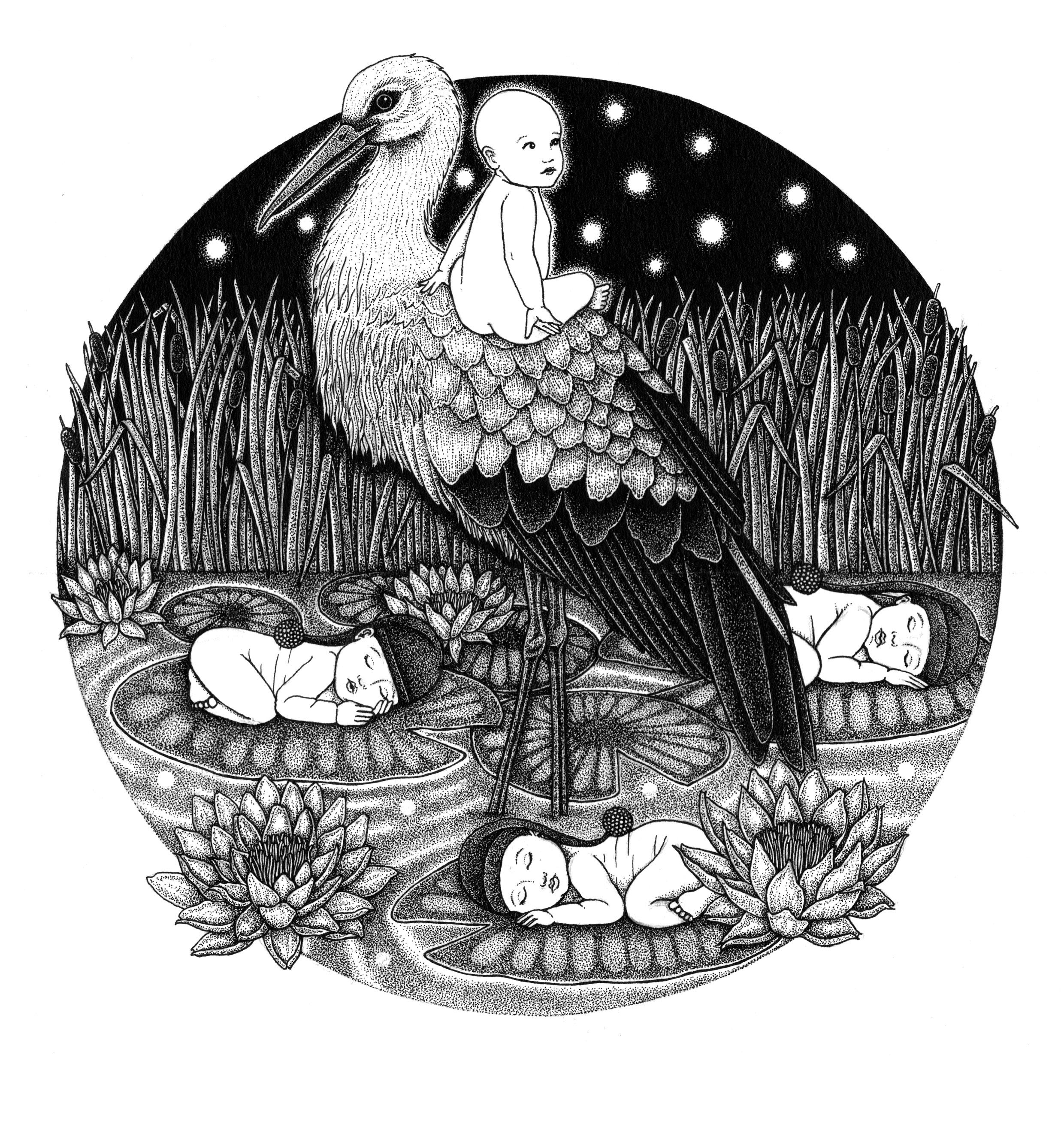 'The Storks'