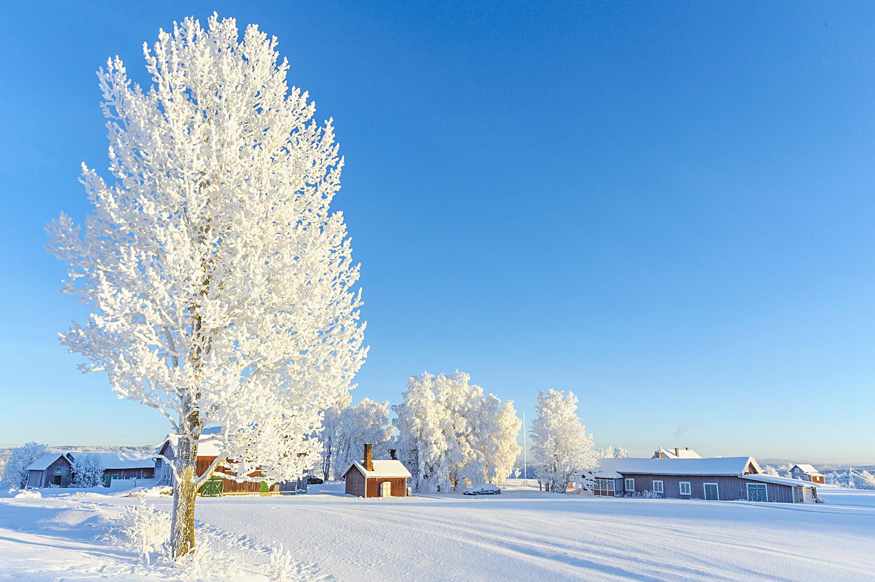 Vålbacken in Jämtland