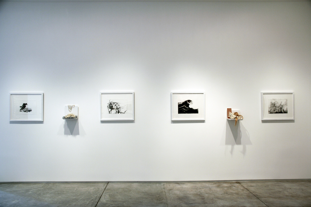 by the time i tell you it will all be forgotten    inman gallery installation shot