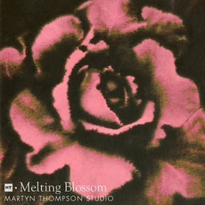 Melting blossom Wallpaper Color.jpg