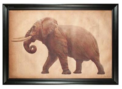 Natural+Curiosities+Elephant.png