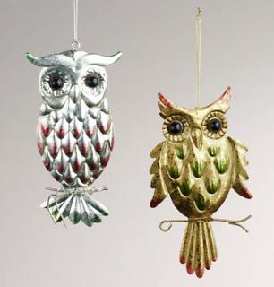World+Market+Owl.png