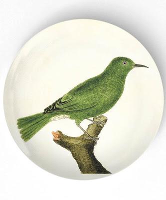 Birds+1.jpg
