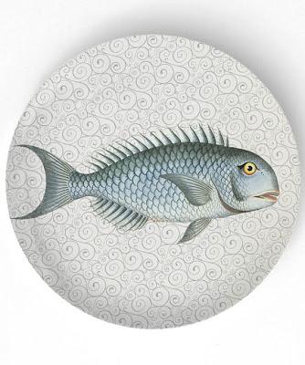 Sea+Life+Fish.jpg