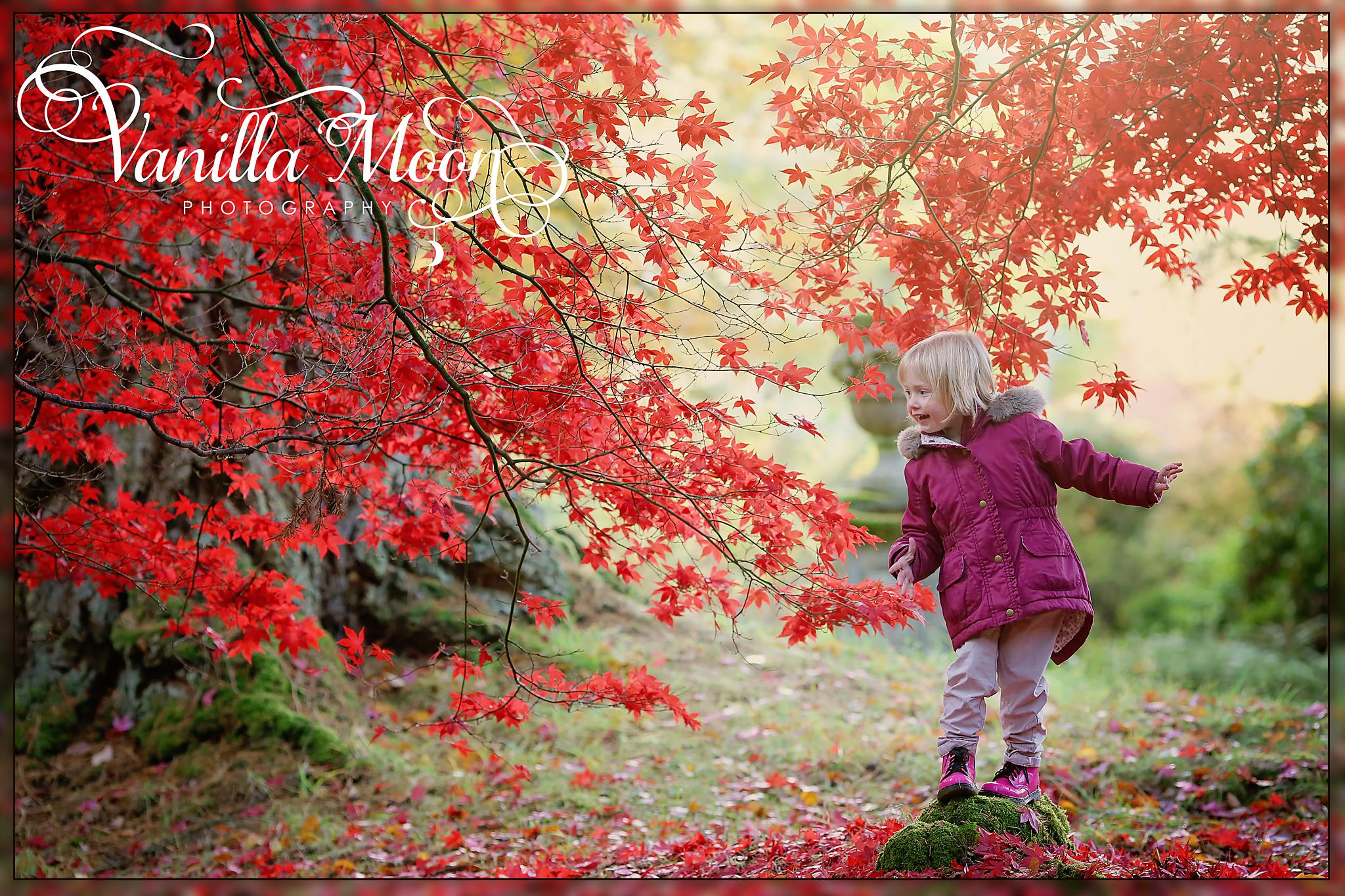 autumn photo.jpg