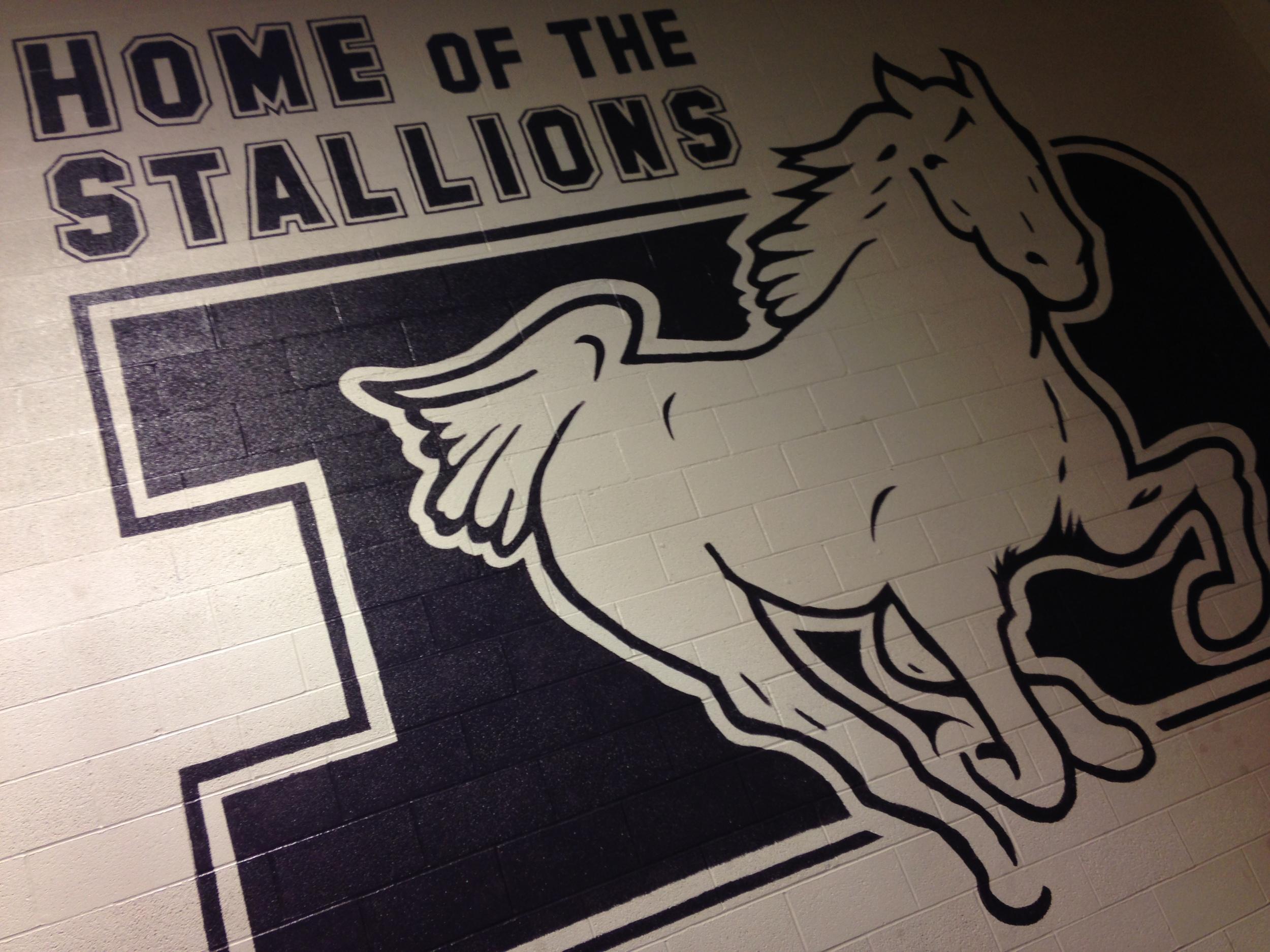 St. Francis DeSales High School   School Home Page    STALLION PRIDE