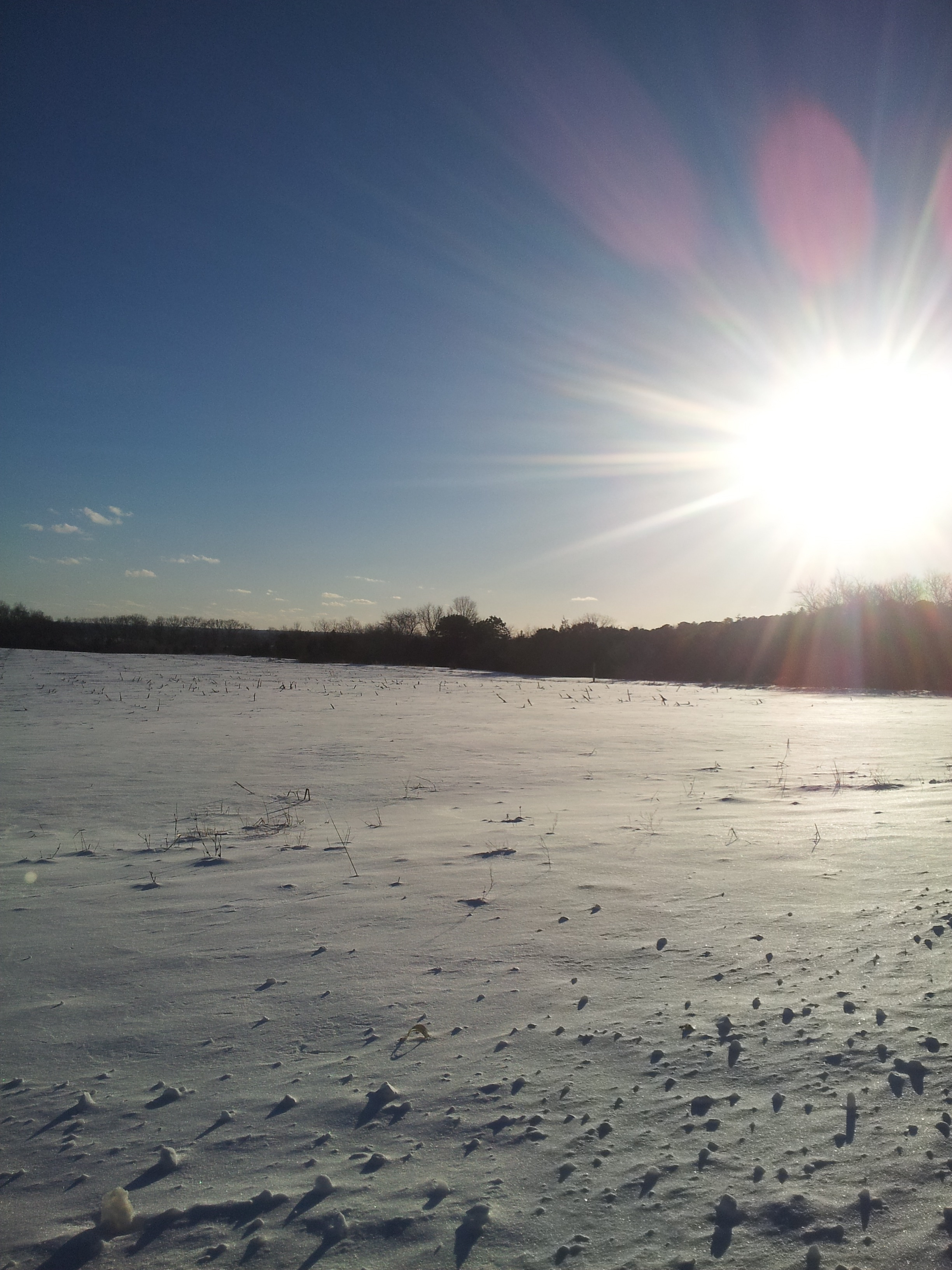 snowfield.jpeg