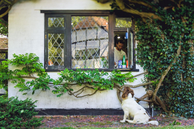 06 dog wants dinner at photography farm.jpg