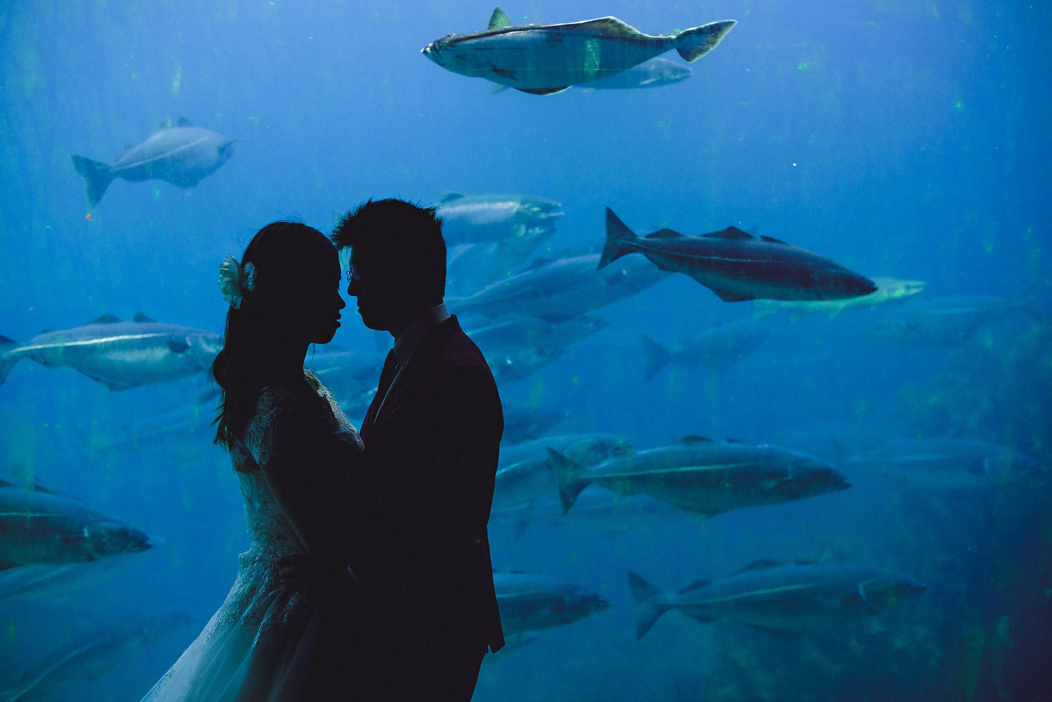Norway wedding photographer elopement pre wedding Eirik Halvorsen-71.jpg