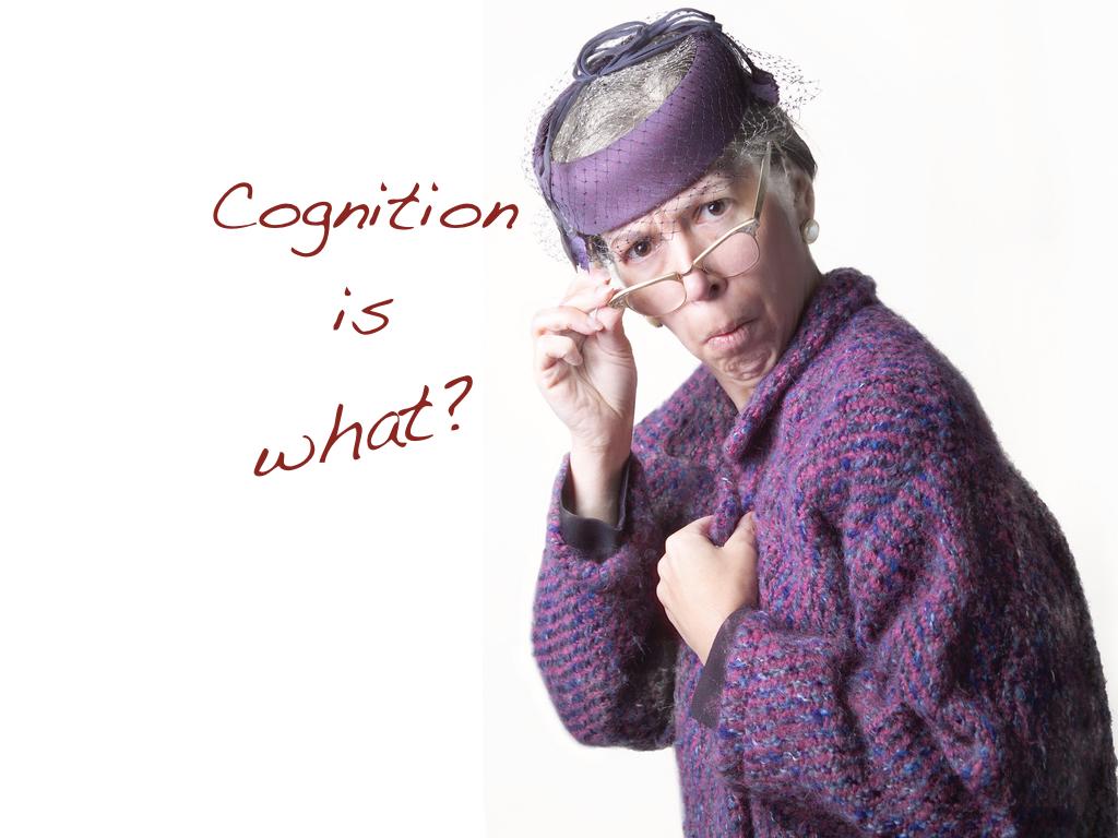 Embodied Cognition - EuNeuroCon 2017.002.jpeg