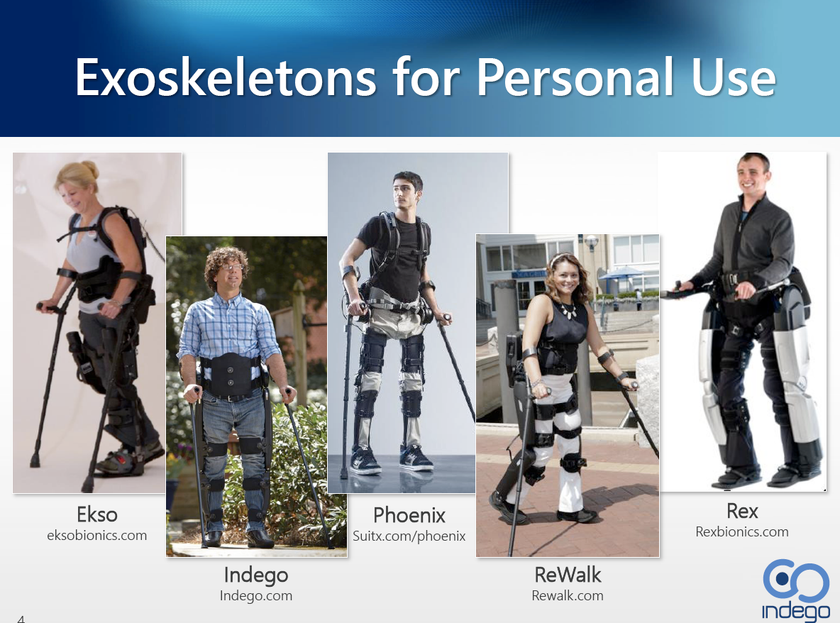 The spectrum of Personal Use Exoskeleton systems