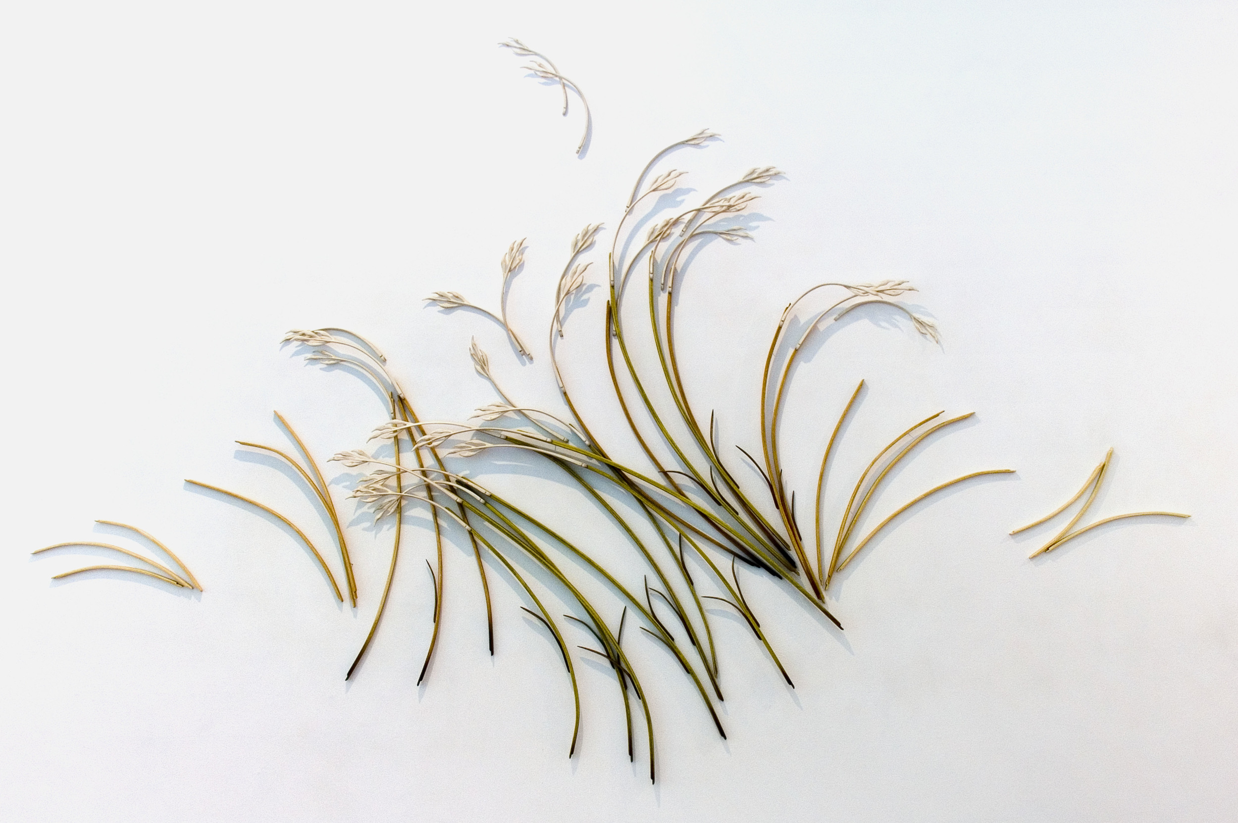 composition with grasses vi, 2008