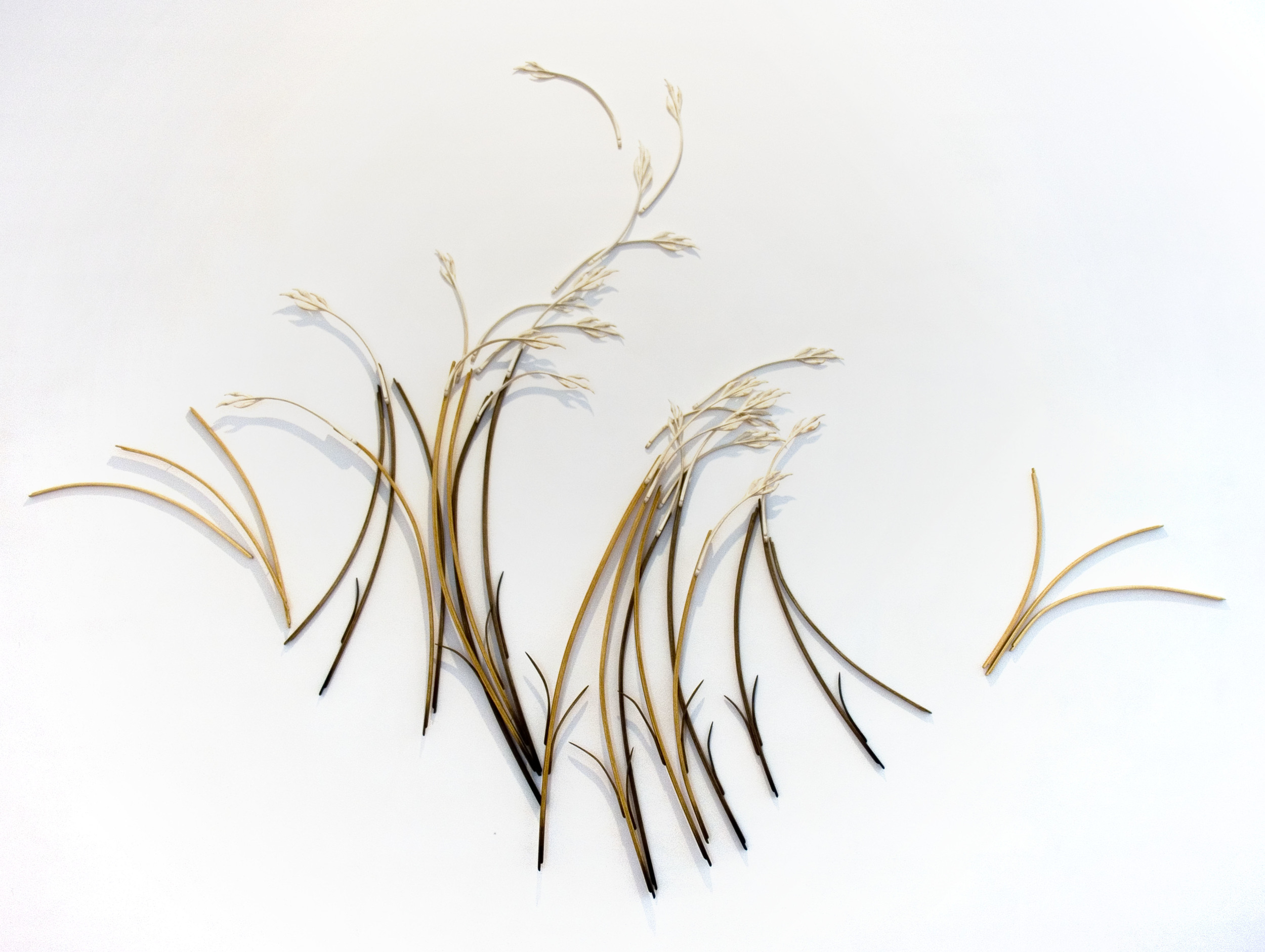 composition with grasses v, 2008