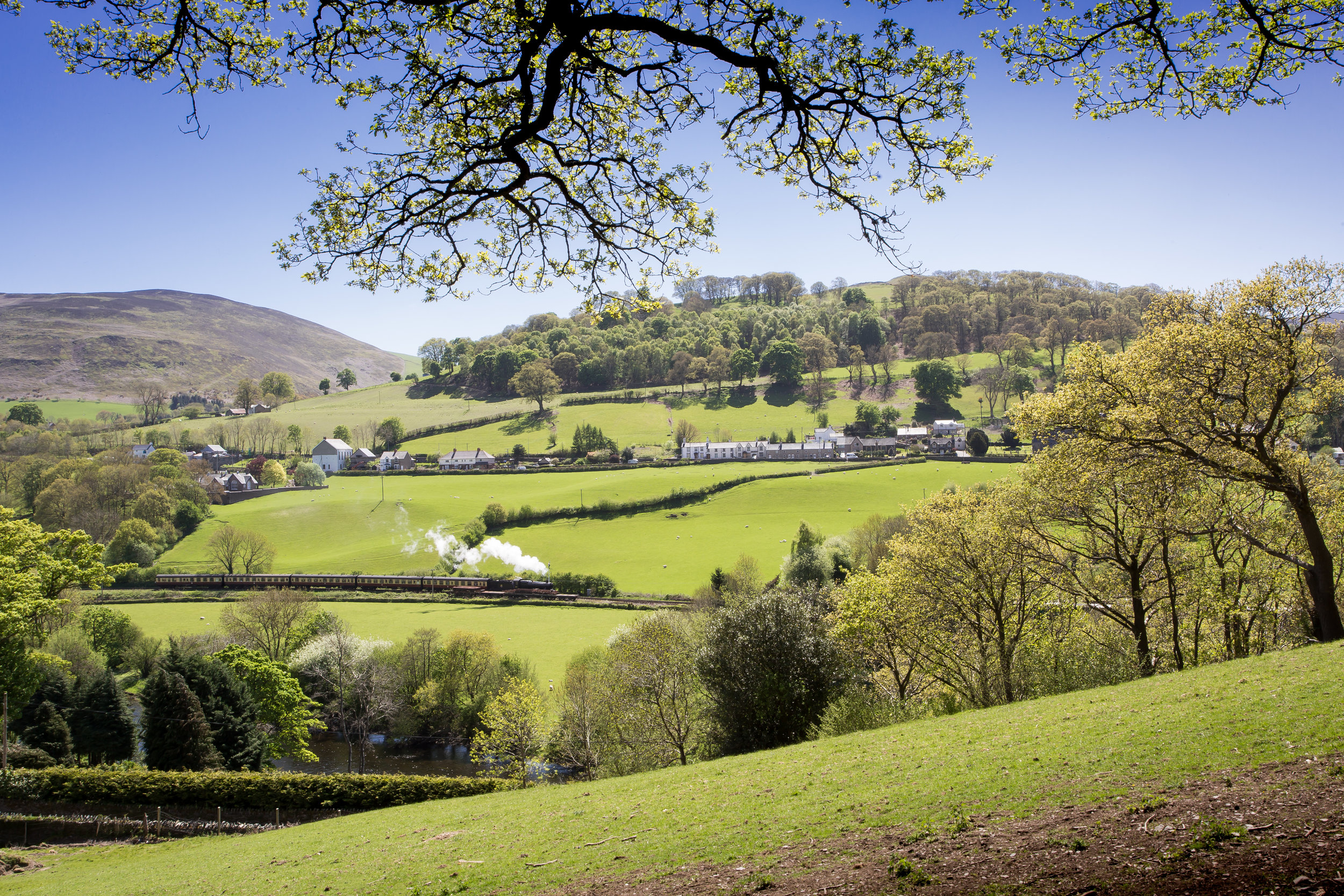 Peace and Tranquility   Coed-Y-Glyn Log Cabins     Take a Look