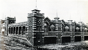 Figure 6.  Royal Victoria Hospital, Belfast. Hanman & Cooper. 1903