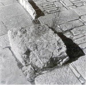 Figure 7. Pathway detail