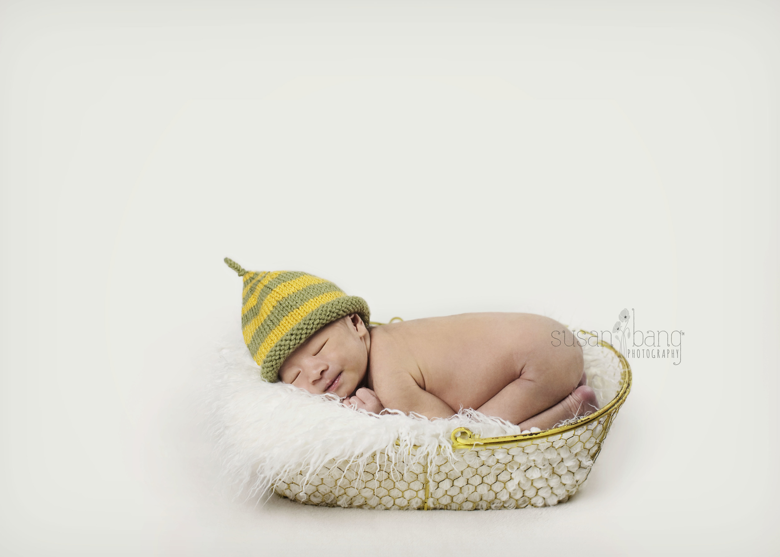 Baby I Newborn session basket