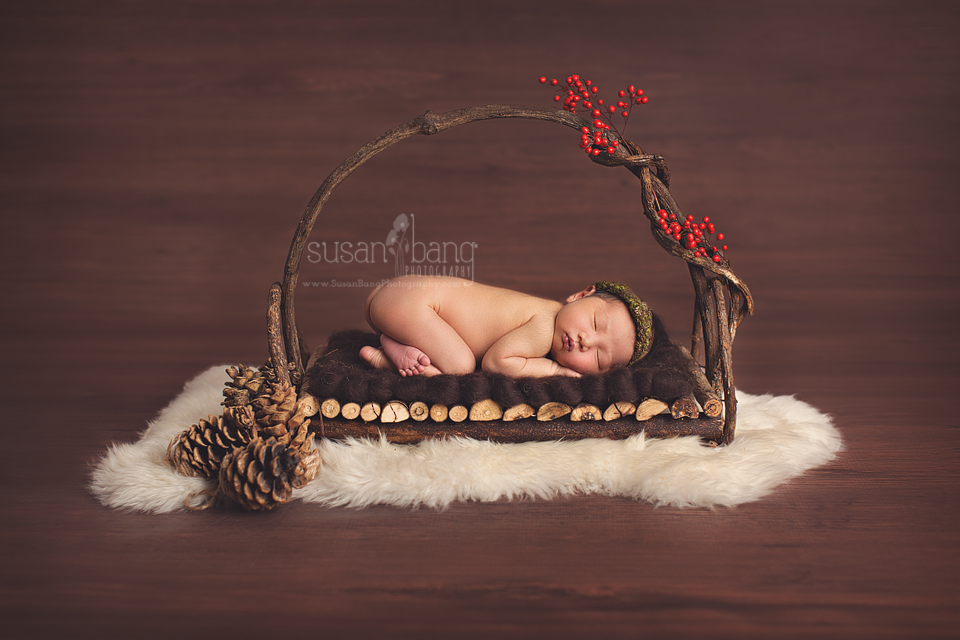 Holiday Newborn Photos on wooden tray