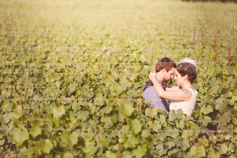 Afterglow_ShelbyAdam_Ravine_Vineyard_Wedding_Photography_Niagara082.jpg