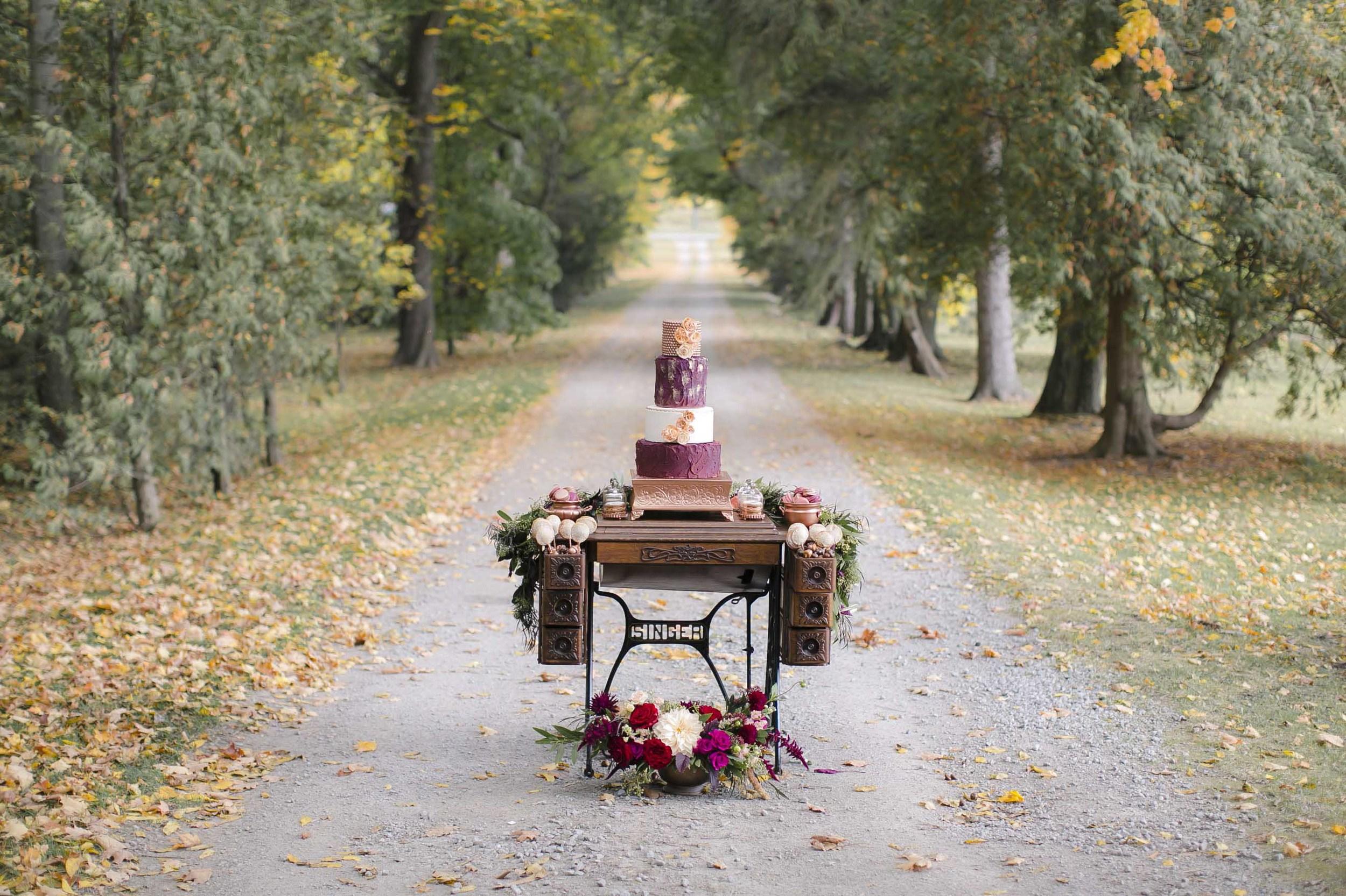 aip_cp_autumncreative-769.jpg
