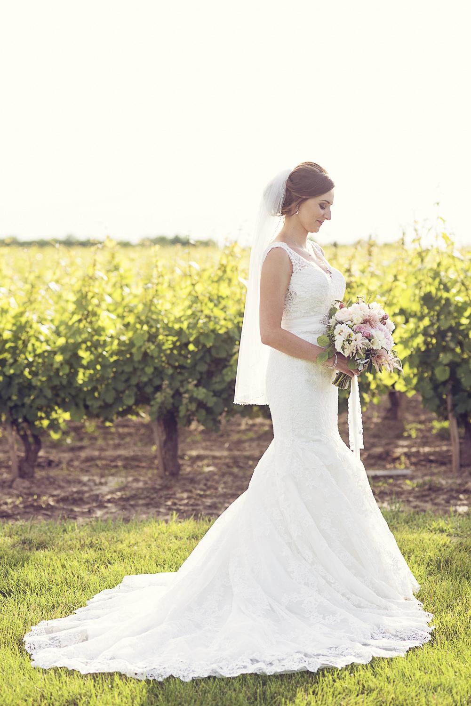 Niagara-Wedding-Stephanie-Evan-Chateau-Des-Charmes-vineyard-photography-by-Renaissance-Studio-Photography-0028.JPG