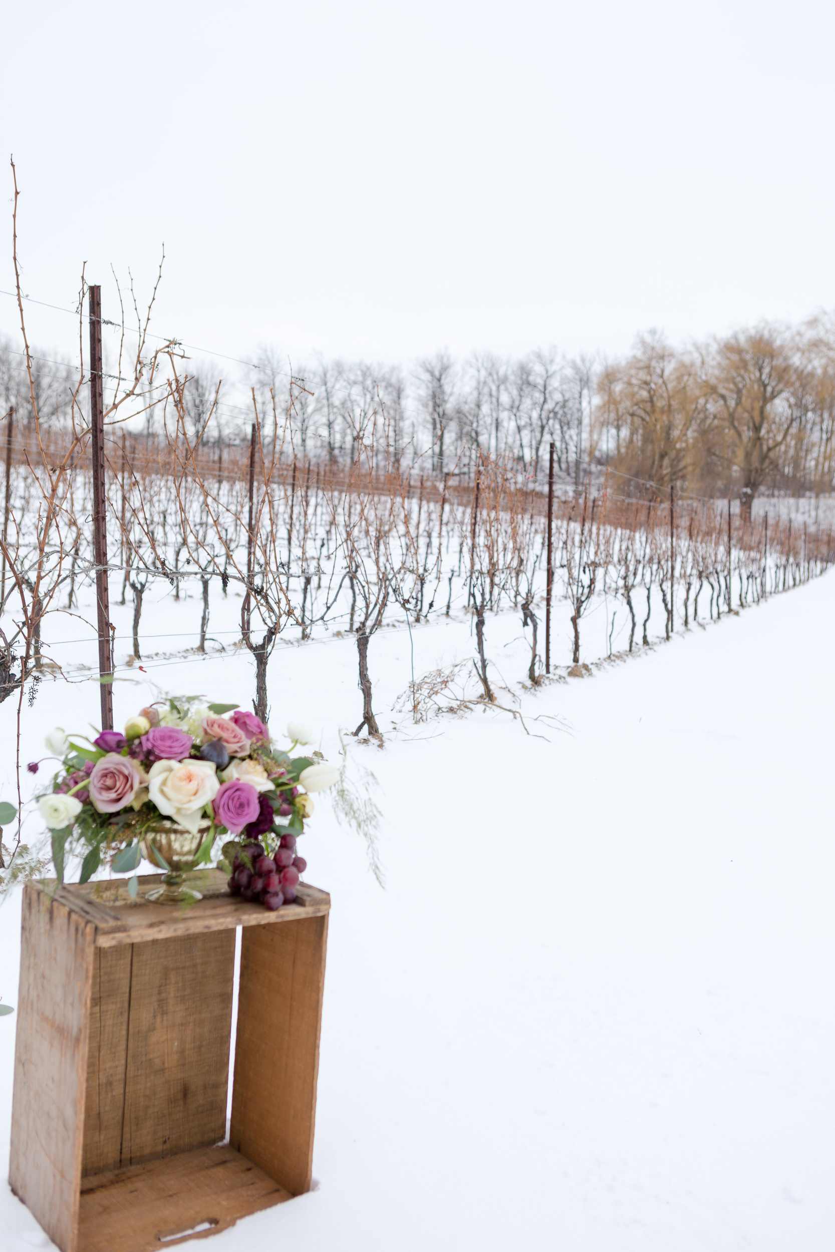 2016 Ice WIne Editorial112.jpg