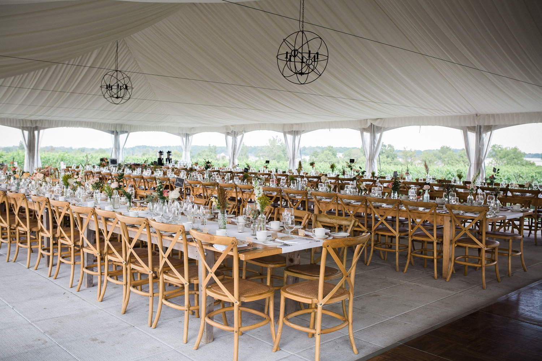 Ravine-Vineyard-Niagara-on-the-Lake-Wedding-photography-by-Danijela-Pruginic-017.JPG
