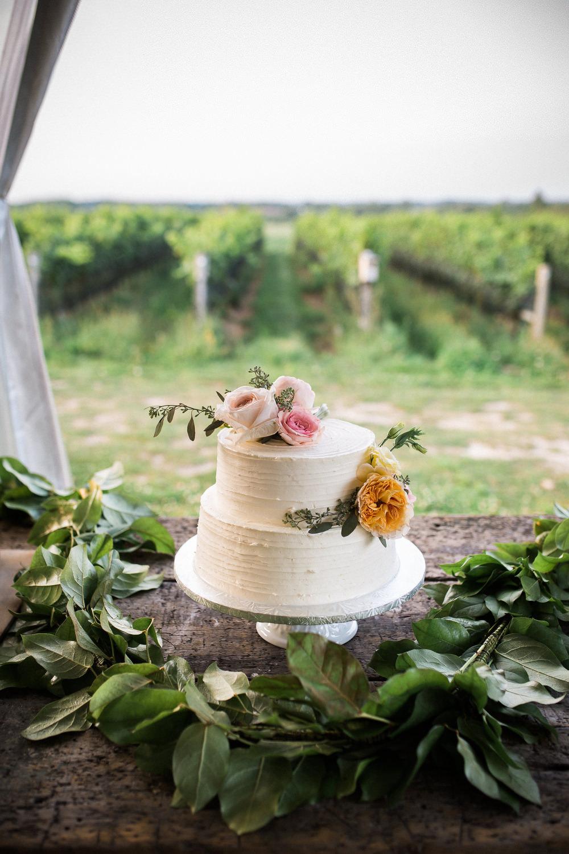 Ravine-Vineyard-Niagara-on-the-Lake-Wedding-photography-by-Danijela-Pruginic-025.JPG