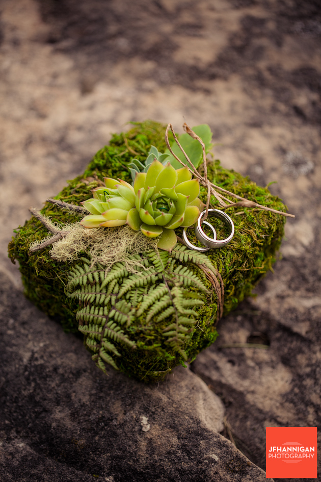 Vineland-Estates-Wedding-Vineyard-Bride-photo-by-Joel-Hannigan-Photography-0004.JPG