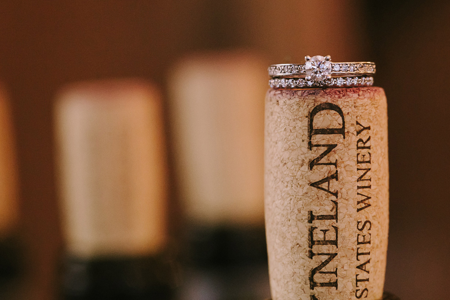 Vineland-Estates-Wedding-Vineyard-Bride-Photo-By-Tamara-Lockwood-Photography-032.jpg