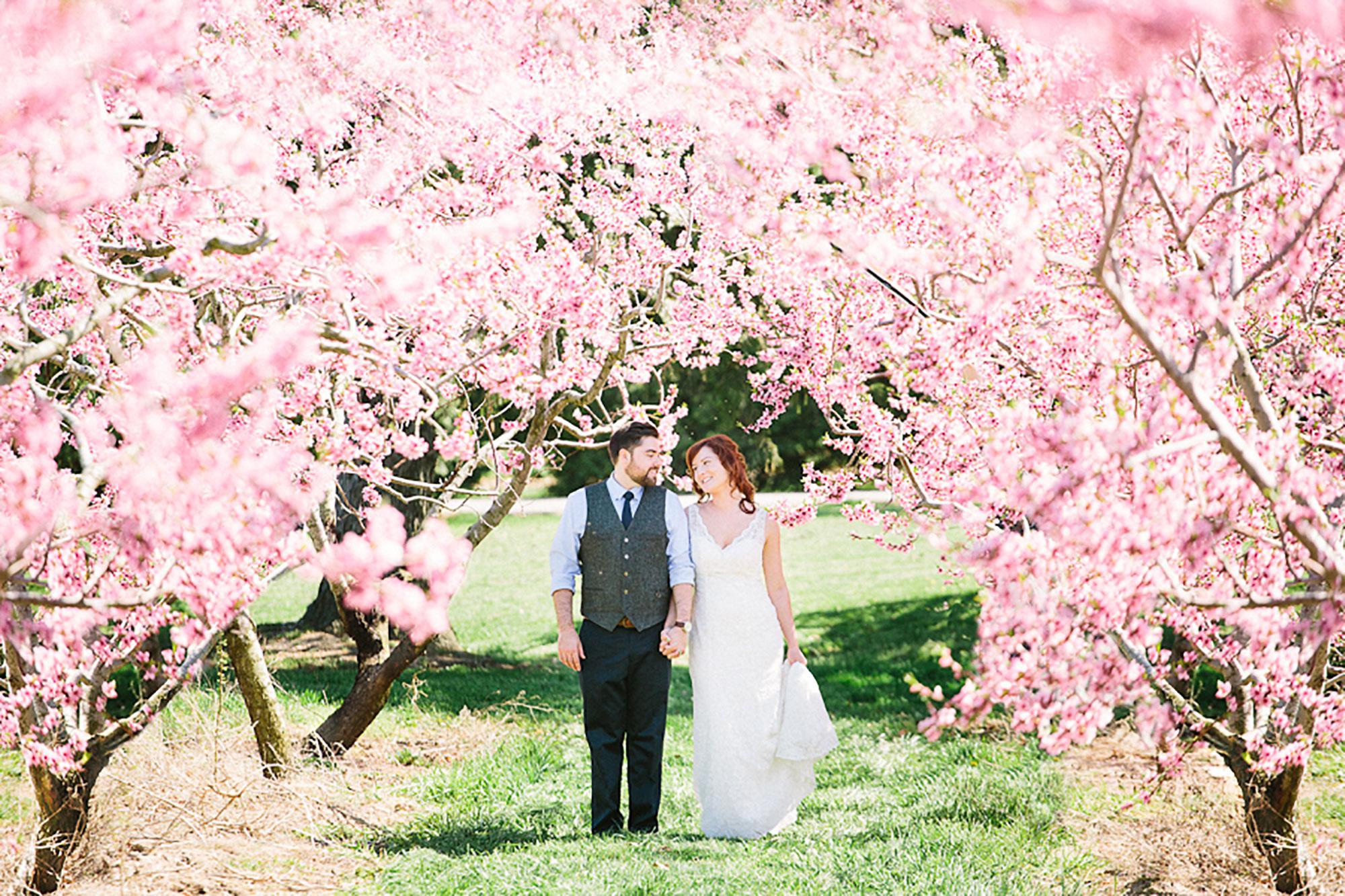 Navy-Hall-Wedding-Vineyard-Bride-Photo-By-Andrew-Mark-Photography-024.jpg
