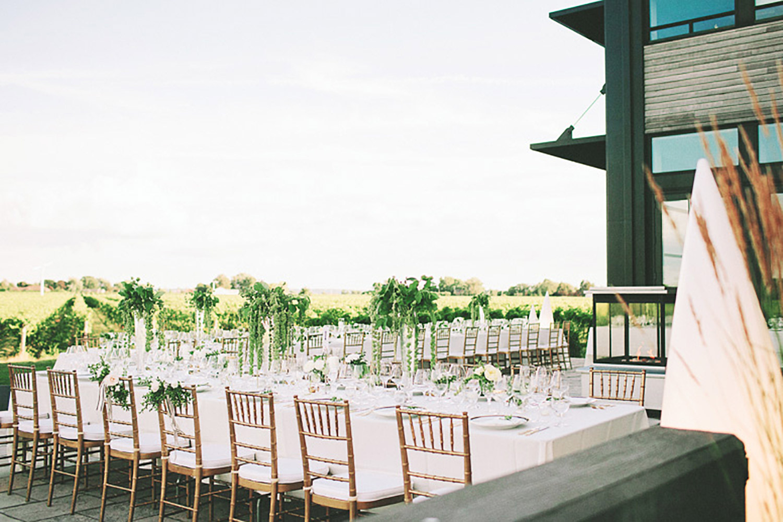 Stratus-Vineyards-Wedding-Vineyard-Bride-Photo-By-Reed-Photography-023.jpg