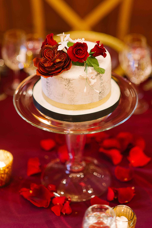 Vintage-Hotels-Wedding-Vineyard-Bride-Photo-By-Tara-McMullen-Photography-025.jpg