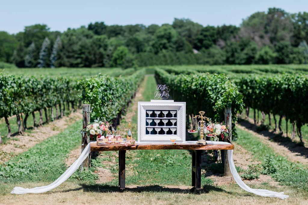 Kurtz-Orchards-Niagara-on-the-Lake-Styled-Wedding-Session-Shotlife-Studio-Calderone-Co-Luxury-Events-Vineyard-Bride-23.JPG