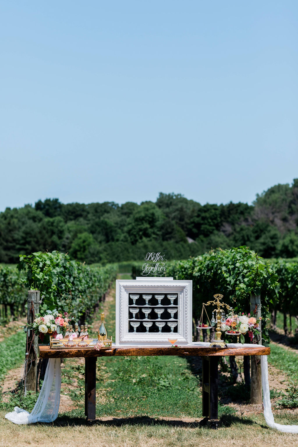 Kurtz-Orchards-Niagara-on-the-Lake-Styled-Wedding-Session-Shotlife-Studio-Calderone-Co-Luxury-Events-Vineyard-Bride-22.JPG