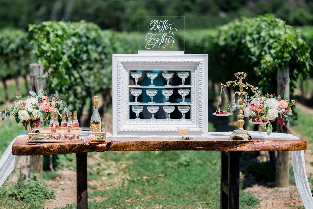Kurtz-Orchards-Niagara-on-the-Lake-Styled-Wedding-Session-Shotlife-Studio-Calderone-Co-Luxury-Events-Vineyard-Bride-24.JPG