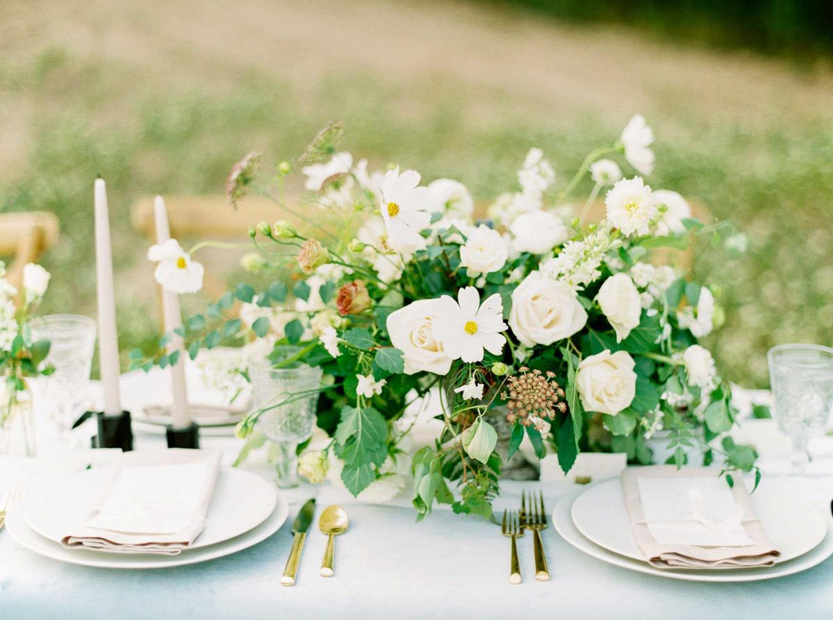 kayla-yestal-vineyard-bride-swish-list-woodland-weddings-niagara-wedding-editorial-59.jpg