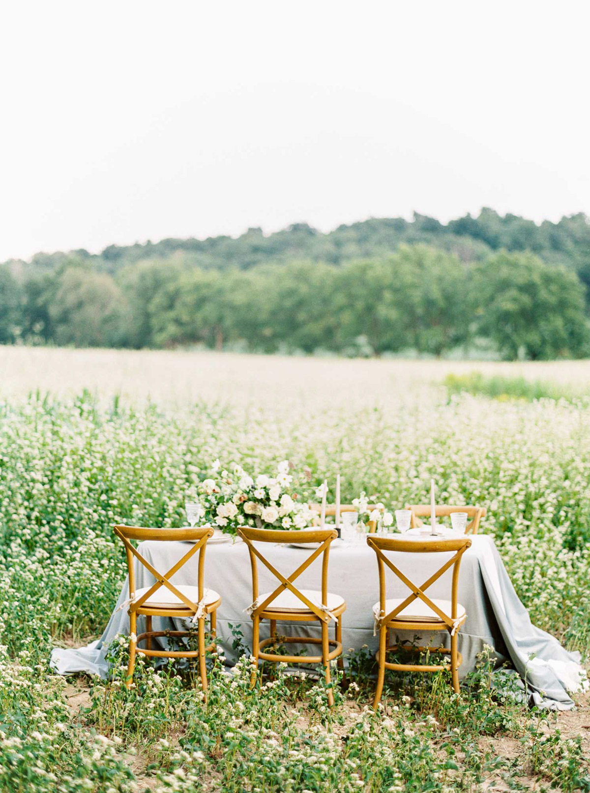 kayla-yestal-vineyard-bride-swish-list-woodland-weddings-niagara-wedding-editorial-63.jpg