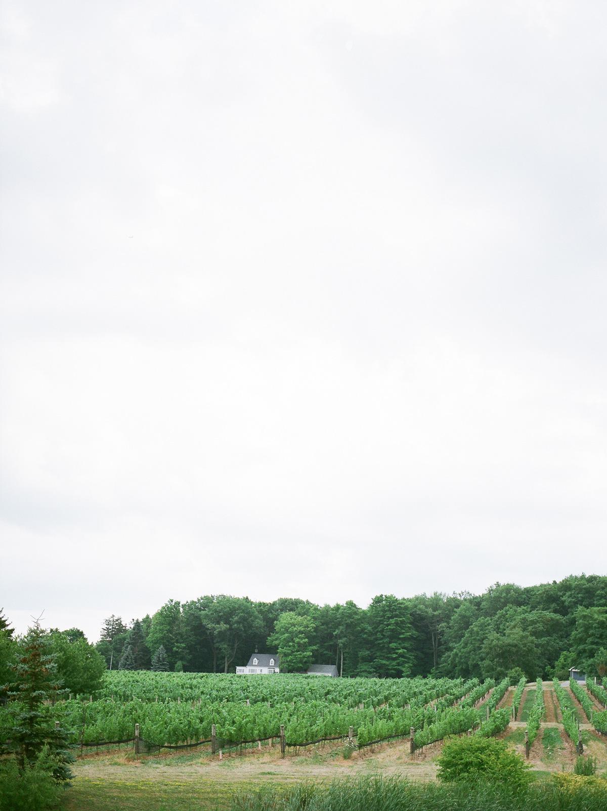 jennifer-xu-photography-vineyard-bride-swish-list-rosewod-eatstes-winery-beamsville-wedding-editorial-20.jpg