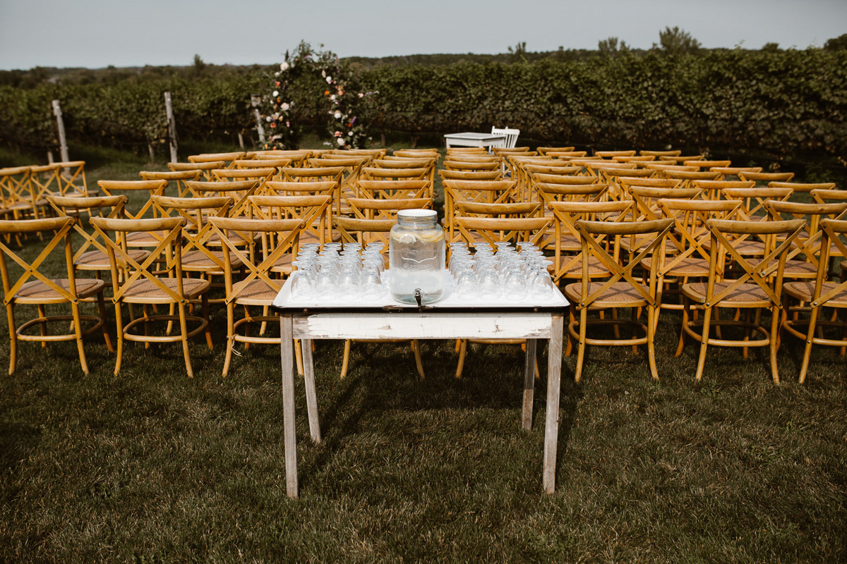 reed-photography-vineyard-bride-swish-list-ravine-vineyard-niagara-on-the-lake-wedding-24.jpg