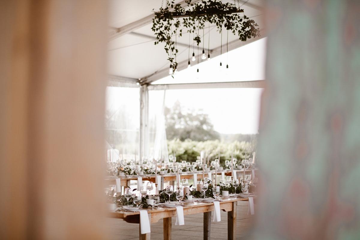 reed-photography-vineyard-bride-swish-list-ravine-vineyard-niagara-on-the-lake-wedding-29.jpg