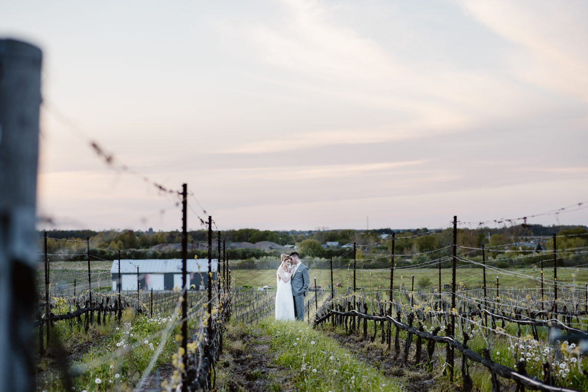 khristel-studios-vineyard-bride-swish-list-ravine-vineyard-niagara-on-the-lake-wedding-editorial-39.jpg
