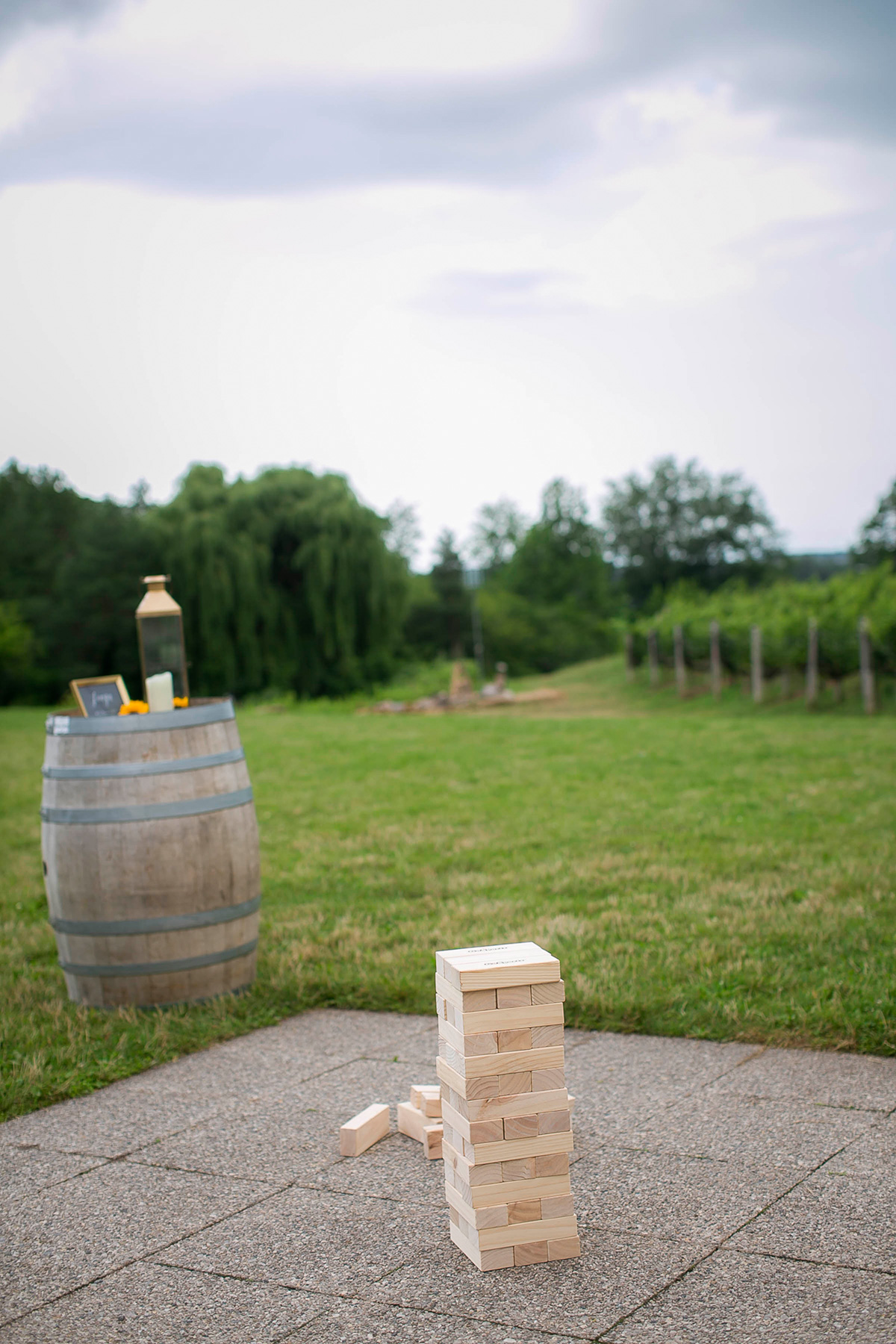 philosophy-studios-vineyard-bride-swish-list-ravine-winery-niagara-on-the-lake-rehearsal-dinner-21.jpg